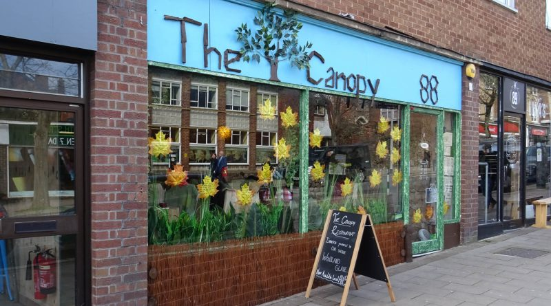 The Canopy - Exeter